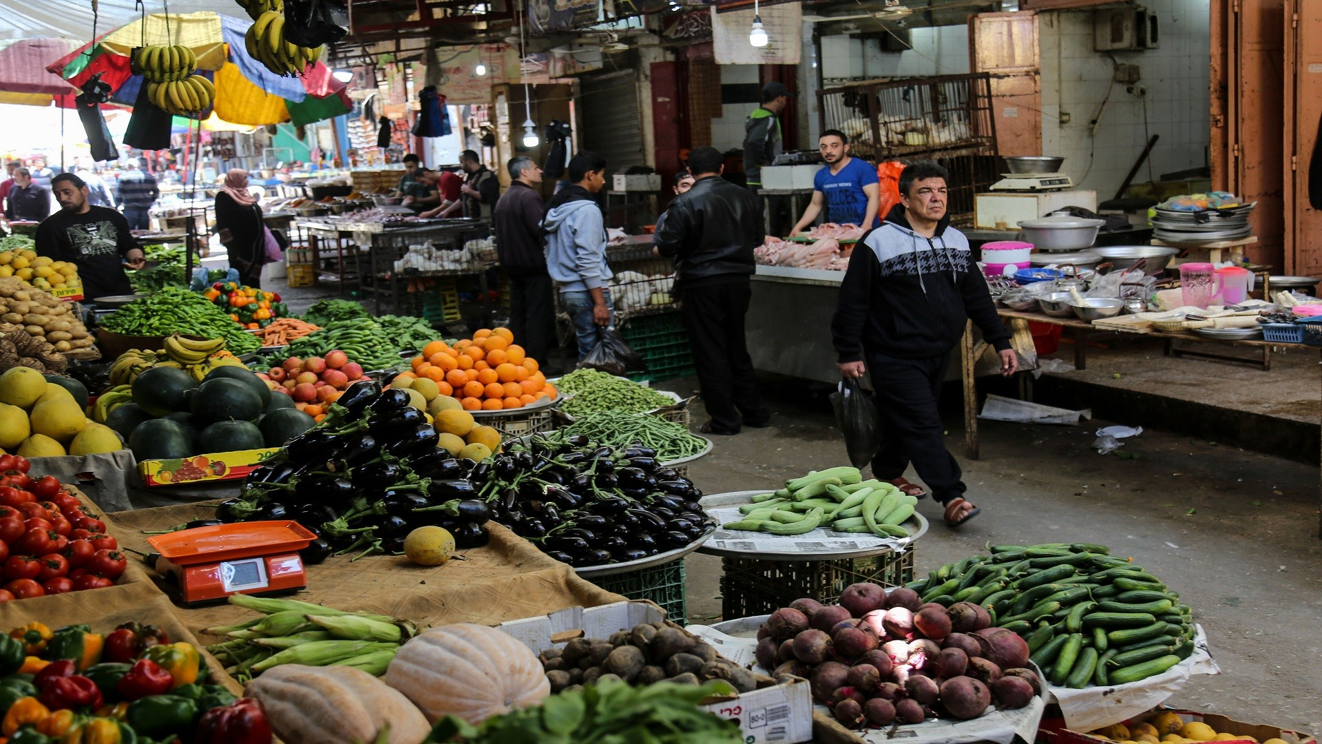 أسعار الخضار والفواكه في غزة